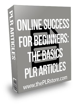 Online Success for Beginners: The Basics PLR Articles
