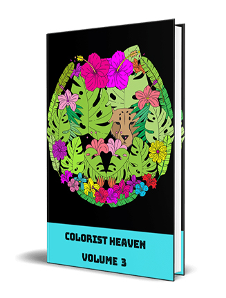 Adult Coloring Heaven Volume 3 MRR