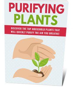Purifying Plants PLR Ebook