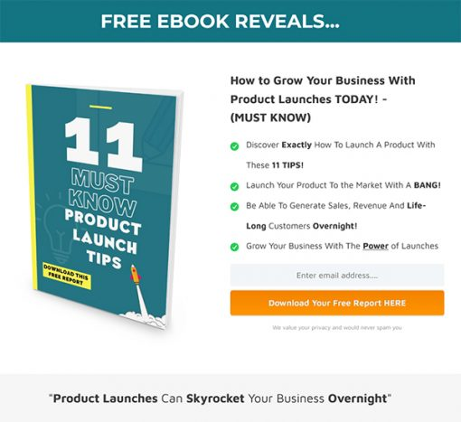 11 Must Know Product Launch Tips Report MRR