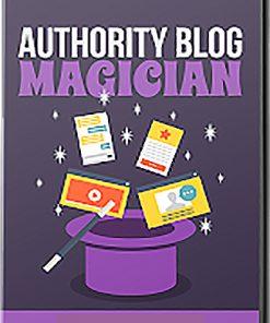 Authority Blog Magician PLR Videos
