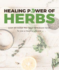 Healing Power of Herbs Ebook MRR