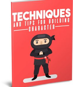 Techniques and Tips for Building Character Ebook MRR