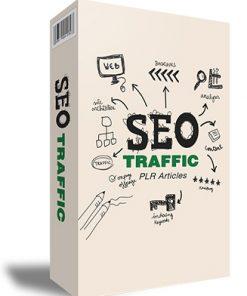 SEO Traffic PLR Articles