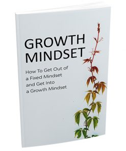 How to Develop Your Mindset Report MRR