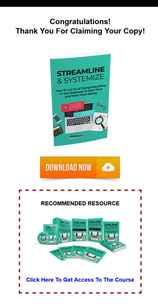 Streamline and Systemize Report MRR