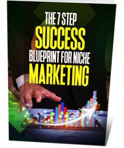 The 7 Step Success Blueprint for Niche Marketing Ebook MRR